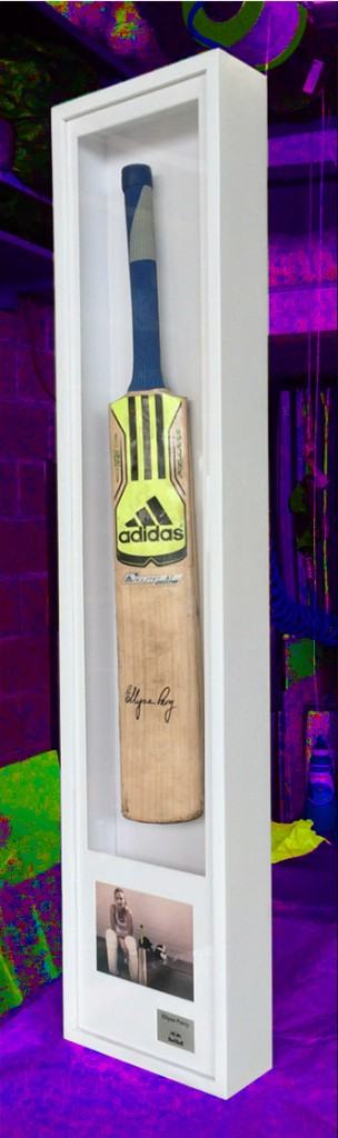 picture framing cricket bat